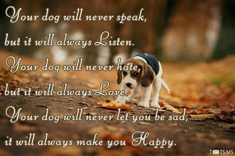 Congratulations for New Pet, Wishes, Messages, Quotes