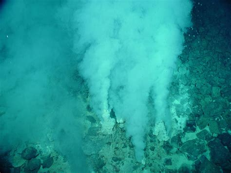 Hydrothermal Vent Chemistry and Life   National Geographic
