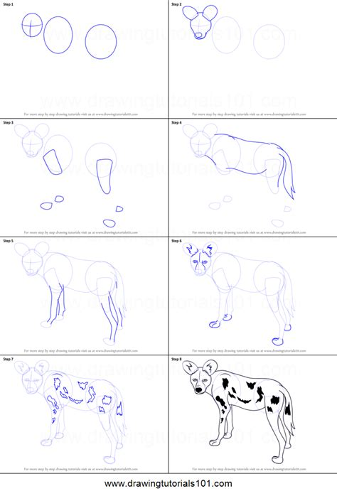How to Draw a African Wild Dog printable step by step