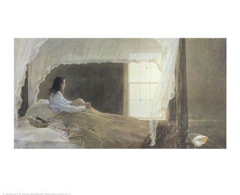 Chambered Nautilus Fine Art Print by Andrew Wyeth at