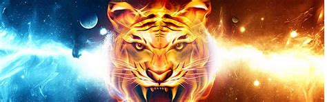 Library of vector royalty free library tiger design banner