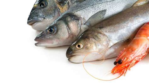 Seafood - Food Allergy Canada